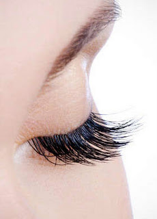 Lash Out Lounge.jpg?1320891492986